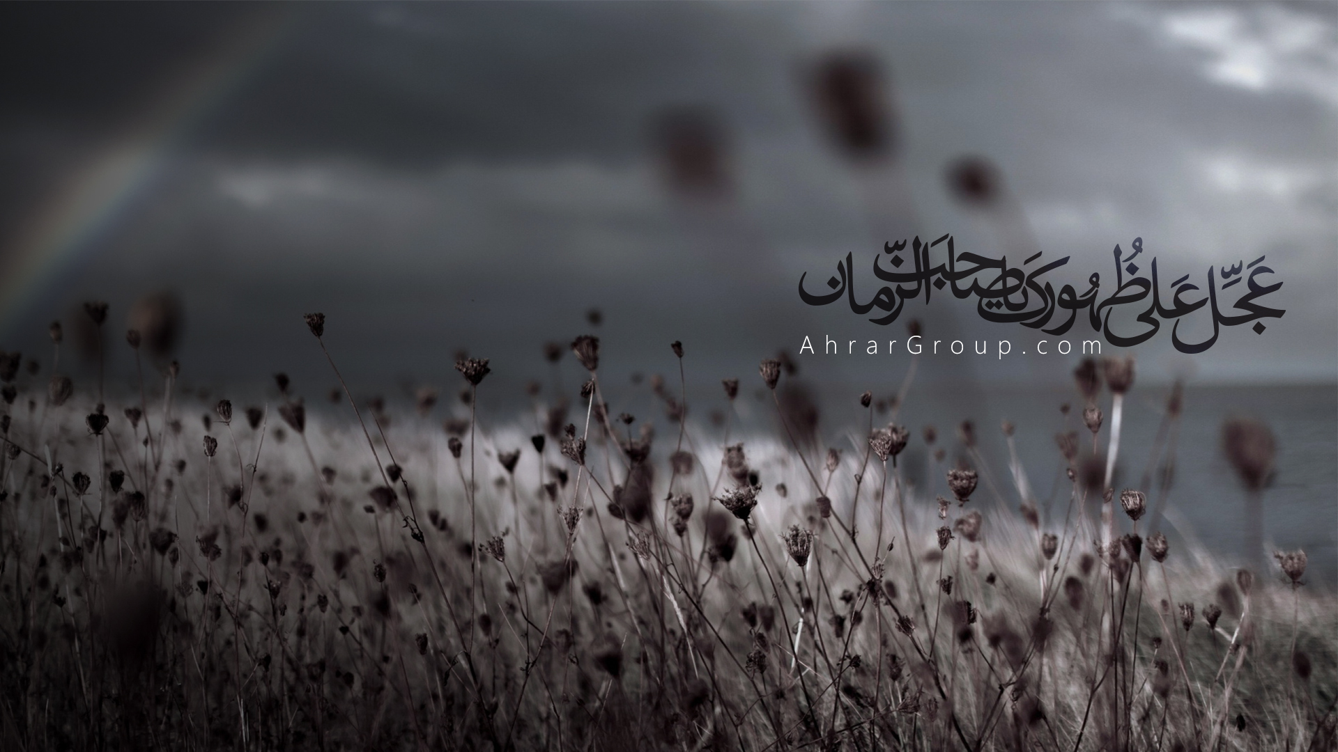 ahrargroup-793